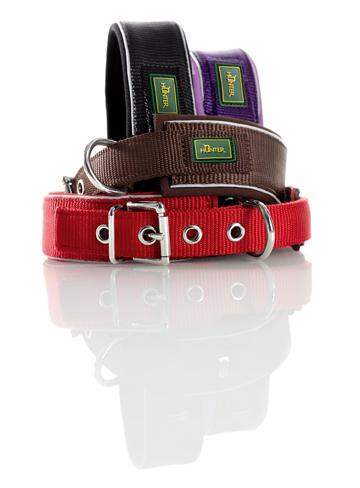 Neopren - Halsbänder / Leinen